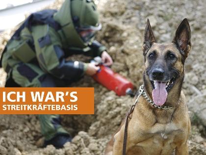Diensthund der Bundeswehr